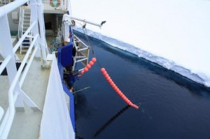 Longline fishing for Antarctic toothfish in the Ross Sea